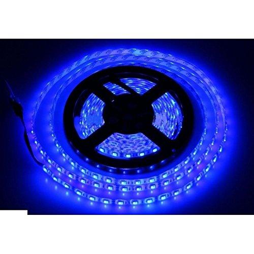 Bobina tira LED 5050flexible 5M adhesivo luz interior exterior IP65Top.–Azul