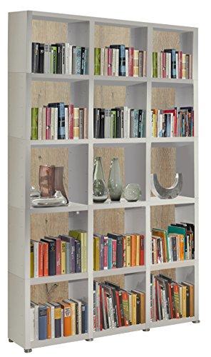 Bücherregal Raumteiler READY 53R in Weiß Seidenmatt mit Rückwand in Castle Oak
