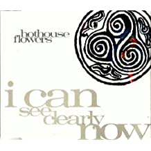 I Can See Clearly Now by Hothouse Flowers