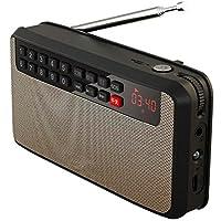 ZYJ Radio FM Estéreo, Reproductor Portátil Retro De Edad, Los Auriculares De Apoyo TF Tarjeta USB LED De Luz De Fondo 2.1 Pista De Audio Música Mini Walkman,Oro