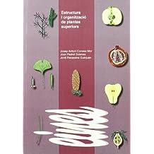 Estructura i organització de plantes superiors. (Eines)