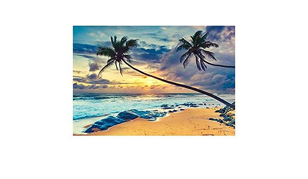 Cassisy 1,5x1m Vinyl Tropisch Fotohintergrund Modischer gr/üner Dschungel Palm verl/ässt Szene Exotischer Ton Fotoleinwand Hintergrund f/ür Fotoshooting Fotostudio Requisiten Party Photo Booth