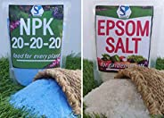 Shiviproducts 600 g NPK Fertilizer and 300 g Epsom Salt