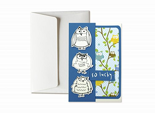 lucky-good-luck-funny-owls-greeting-card-with-envelope-6-x-41-hand-made-card-blank-inside