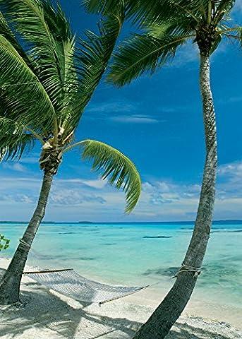 Affiche 50x70 cm Hamac sur la plage / Hammock between two palm trees on beach Anonyme