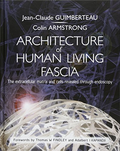Architecture of Human Living Fascia: Cells and Extracellular Matrix as Revealed by Endoscopy (Book & DVD) by Jean-Claude Guimberteau (2015-10-19)