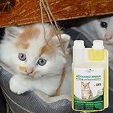 Geruchsneutralisierer Spray für Katzen – natürlicher Katzenurin Entferner – gegen Katzenklo Geruch (500ml Konzentrat ergeben 25 Liter gebrauchsfertigen Katzenurin Geruchsentferner) - 8