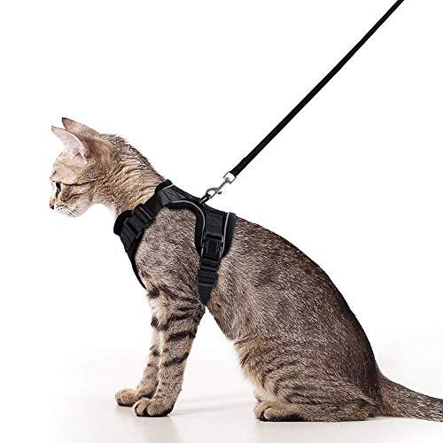 rabbitgoo Harnais pour Chat avec Laisse pour Promenade, Harnais Kitty Vert avec Laisse - Bandes réfléchissantes réglables Harnais pour Gilet pour Chats de Taille S avec Laisse en métal Noir