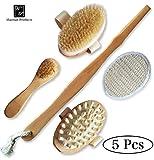 Best Body Detox Products - Premium Boar Bristle Body & Face Brush Set Review