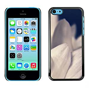 Omega Covers - Snap on Hard Back Case Cover Shell FOR Apple iPhone 5C - White Flower Petals Garden Plant