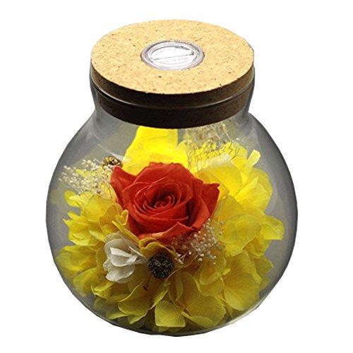 [nuova versione 2018] Havenfly handmade fiori conservati rosa decor con vetro a forma di mela-miglior regalo per San Valentino,...