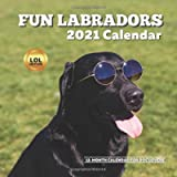 Fun Labradors LOL 2021 Calendar: Funny Wall Planner for Dog Lover Owners Men Women Birthday Gift Ideas, Stocking…