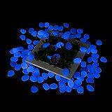 Tvird Leuchtsteine 665g ca. 300 St Künstliche Kieselstein Leuchtkiesel für Graten/Gehweg/Aquarium/Vase/Baumgrube/Schwimmbad/Straße-Deko Etc.(Blau)