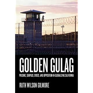 Golden Gulag: Prisons, Surplus, Crisis, and Opposition in Globalizing California, Second Edition (American Crossroads)