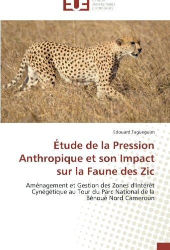 etude-de-la-pression-anthropique-et-son-impact-sur-la-faune-des-zic-amenagement-et-gestion-des-zones