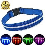MASBRILL Leuchthalsband für Hunde Aufladbar LED Hundehalsband 100% Wasserdicht Blinkende Lichter mit USB (M, 50cm, Blau)