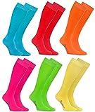 Rainbow Socks 6 Paar Bunte KNIESTRÜMPFE Gekämmte BAUMWOLLE, Modern Lange Socken MULTIPACK für Jeden Tag, Bequem und Fein|HELLE FARBEN, EU Größen 42-43, Made in EUROPA