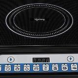 Lifelong Inferno LLIC12 2000-Watt Induction Cooktop (Black)