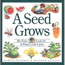 A Seed Grows: My First Look at a Plant's Life Cycle (Child's First Look at Nature - A Unique Flap-Book Series)
