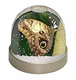 Advanta Eule Schmetterling auf Baum Foto Schneekugel Wasserball Strumpffüller Geschenk Mehrfarbig 9,2 x 9,2 x 8 cm
