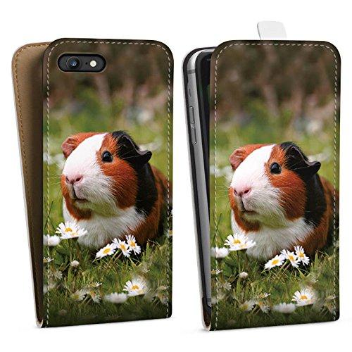 Apple iPhone 5s Silikon Hülle Case Schutzhülle Meerschwein Meerschweinchen Tiere Downflip Tasche weiß