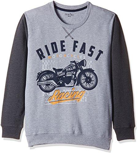 PalmTree Baby Boys' Sweater (131070610707 1341_Blue_18-24 months)
