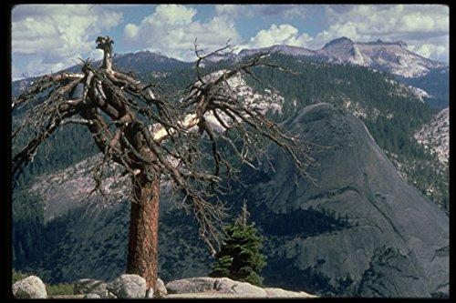 397051 Glacier Point Yosemite A4 Photo Poster Print 10x8