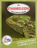 The Chameleon Fact and Picture Book: Fun Facts for Kids About Chameleons (Turn and Learn)