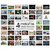 metaFox - ZUSAMMEN WACHSEN - Postkarten-Set der besonderen Art für Teambuilding & Teamentwicklung, mit 52 Karten - Kartenset Coaching Tool Motivationskarten Gefühlskarten Kommunikationstraining