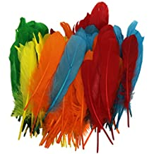 Playbox - plumas indias (5 colores) - 15 cm - 120 pcs - (PBX2470046)