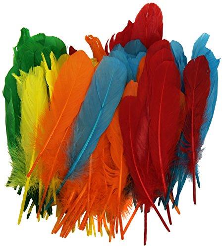 Playbox - plumas indias (5 colores) - 15 cm - 120 pcs - (PBX2470046)