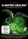 Q-Matrix-Healing Basic - Das ultimative Quantenheilungs-Seminar mit echter Workshop-Athmosphäre [2 DVDs]
