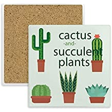 Posavasos cuadrado con diseño de cactus de plantas en maceta con ventosas y piedra absorbente para