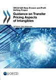 Oecd/G20 Base Erosion and Profit Shifting Project Guidance on Transfer Pricing Aspects of Intangibles by Oecd Organisation For Economic Co-Operation And Development (2014-10-01)