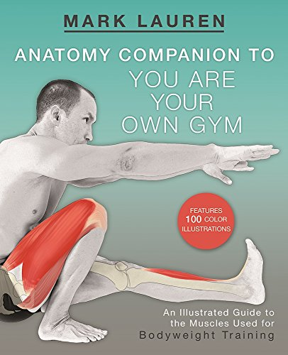 You Are Your Own Gym Anatomy Companion: An Illustrated Guide to the Muscles Used for Bodyweight Training