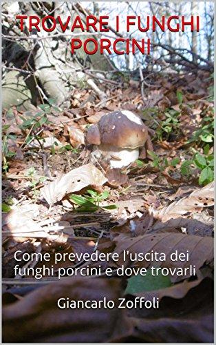 trovare-i-funghi-porcini-come-prevedere-luscita-dei-funghi-porcini-e-dove-trovarli