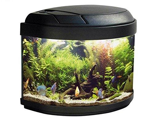 ACQUARIO TWIST - Completo di coperchio plastico, sistema di illuminazione, filtro biologico, pompa di ricircolo e termoriscaldatore.
