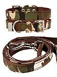 UrbanPup Halsband und Leine (Set), Camouflage-Stoff