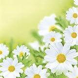 20 Servietten White daisies – Hübsches Margeritenfeld / Blumen 33x33cm