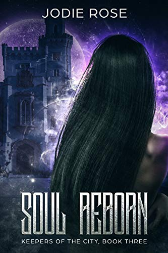 Soul Reborn (Keepers of the City Book 3) book cover
