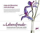 Pal Lebensfreude-Inspirationen-Kalender 2018: PhotoArt Kalender im Querformat: 55 x 45,5 cm
