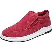ALIKEEY Zapatos De Los Hombres De Lona Plana Talón Transpirable Casual  Deportes Estilo Zapatos Perezosos ImitacióN 32e02911699