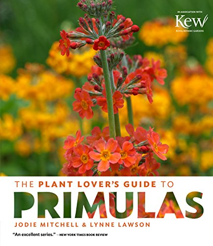 plant-lovers-guide-to-primulas-the-plant-lover-s-guides