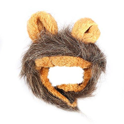 e, modische Haustier Katze Hund Welpen Perücke Herbst Winter Kostüm mit Ohren(#3) (Hund Kostüme 3 Köpfe)