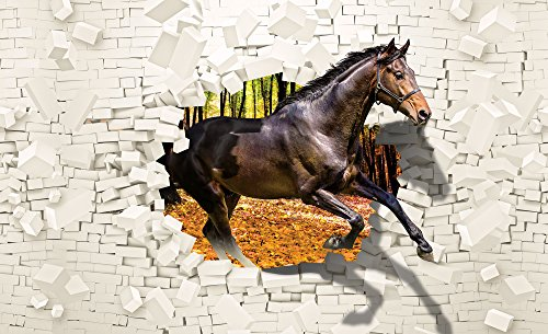 olimpia-design-fototapete-pferd-1-stuck-3138p8