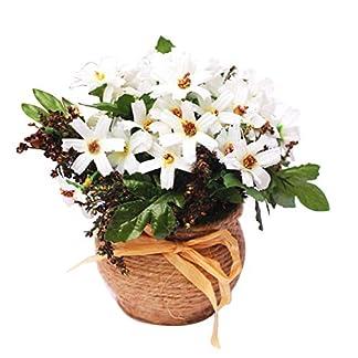 Vosarea Plástico simulado Falso crisantemo simulación de Hierba Verde Flores Artificiales Plantas con macetas para Muebles para el hogar (Blanco)