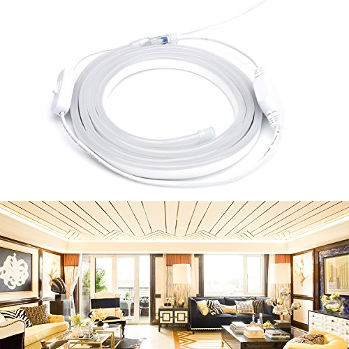 LEBRIGHT LED Streifen mit Schalter, 360 Grad LED Neon Streifen Lichter, AC100-240V 2835SMD IP65 Lichtband (120v-licht-schalter)