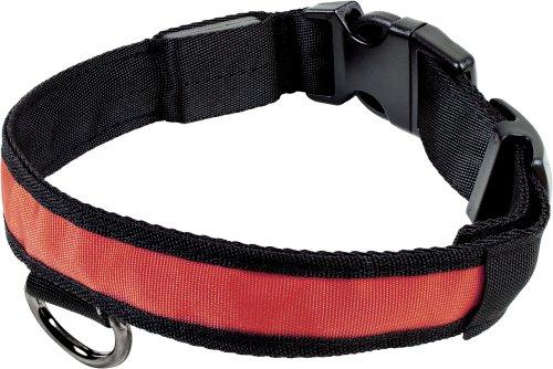 Smartfox leuchtendes LED Hundehalsband Sicherheitshalsband Halsband Licht, Größe S, Rot