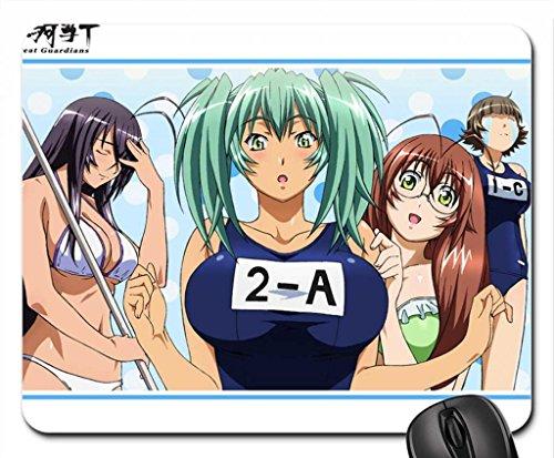 ikkitousen-kanu-unchou-ryofu-housen-ryuubi-gentoku-mouse-pad-mousepad-259-x-211-x-03-cm