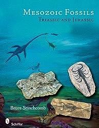 Mesozoic Fossils Triassic and Jurassic by Bruce L Stinchcomb (2008-12-01)